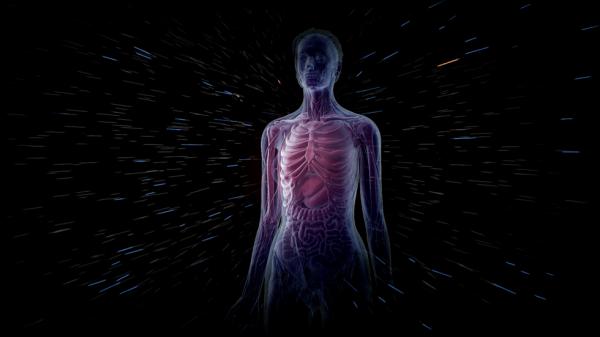 terapia bowen bodydecode